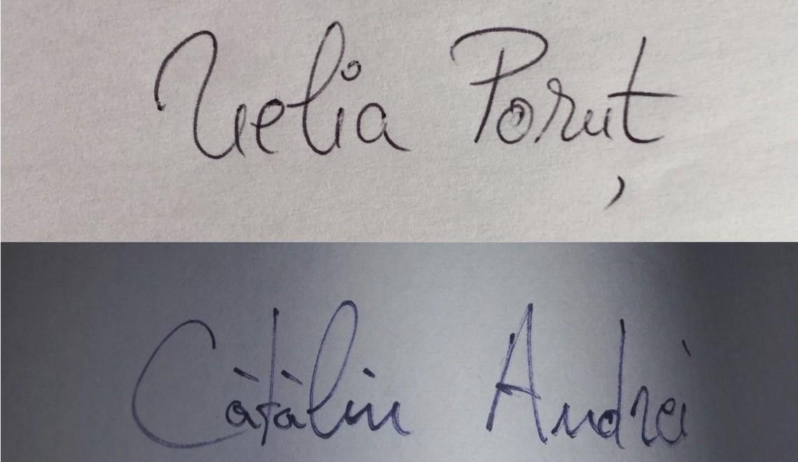 Questionnaire de Proust revizuit și corectat de Nelia Poruț & Cătălin Andrei Costin